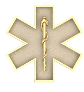 EMS Star of Life Earring - Small Size 1