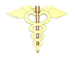 Medical Caduceus Earring - Small Size 1